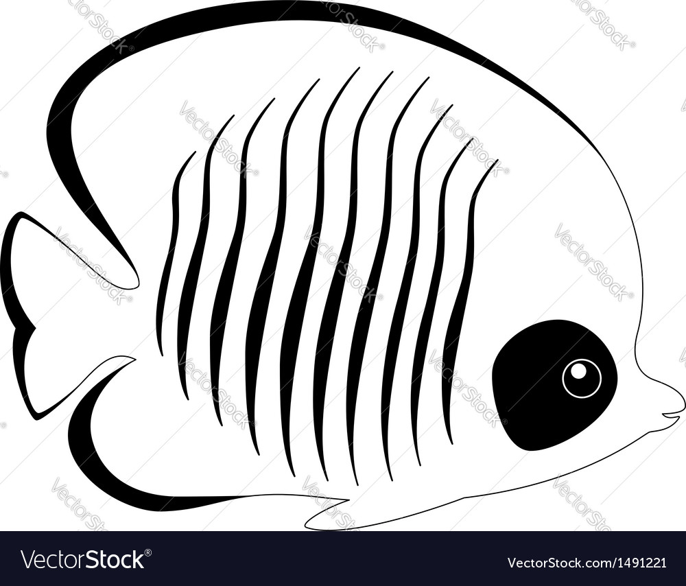 Silhouette of butterfly fish isolated on white vector | Price: 1 Credit (USD $1)