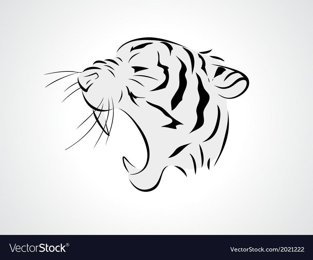 Tiger side vector | Price: 1 Credit (USD $1)