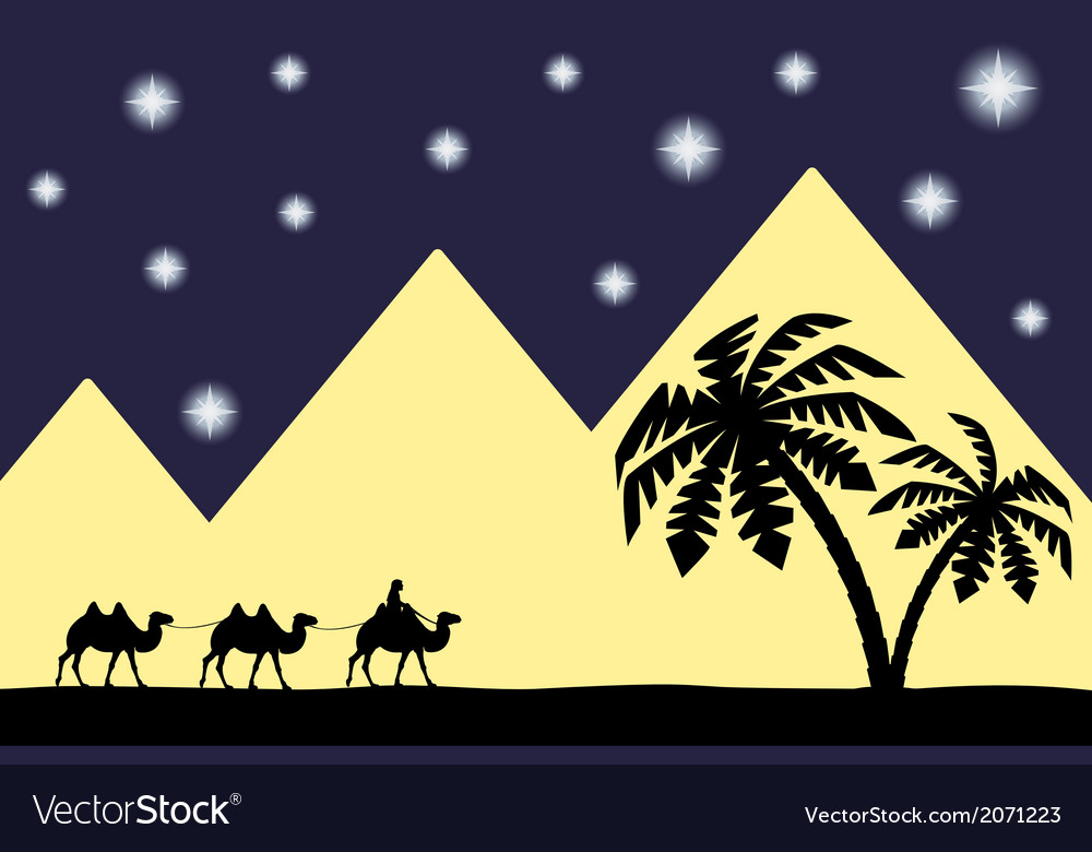 Man on the camel the pyramids vector | Price: 1 Credit (USD $1)