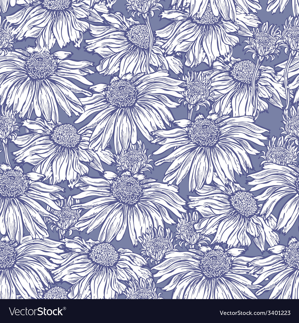 Seamless flower camomile vector | Price: 1 Credit (USD $1)