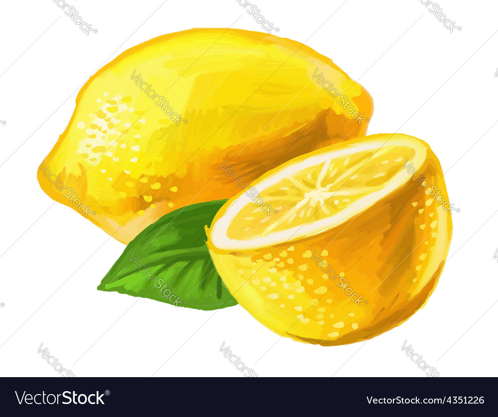 Picture of lemon vector   Price: 1 Credit (USD $1)