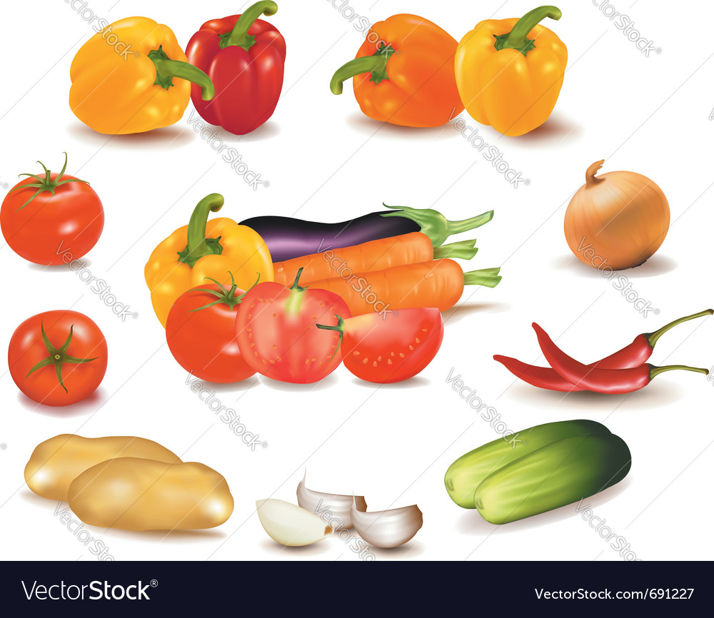 Colorful group of vegetables vector | Price: 3 Credit (USD $3)