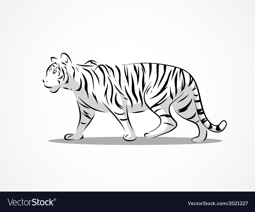 Tiger side 2 vector | Price: 1 Credit (USD $1)