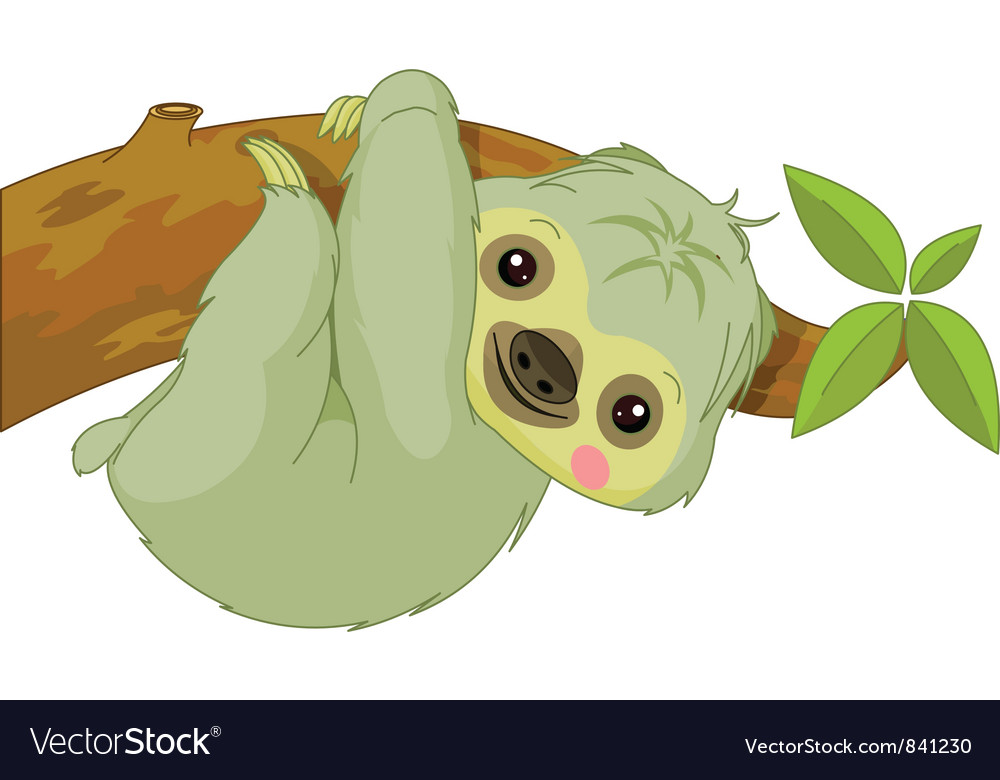 Cartoon sloth vector | Price: 1 Credit (USD $1)
