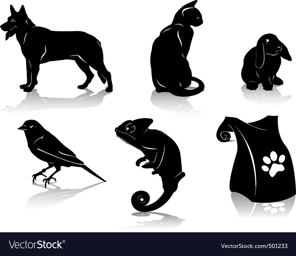 Pet vector | Price: 1 Credit (USD $1)