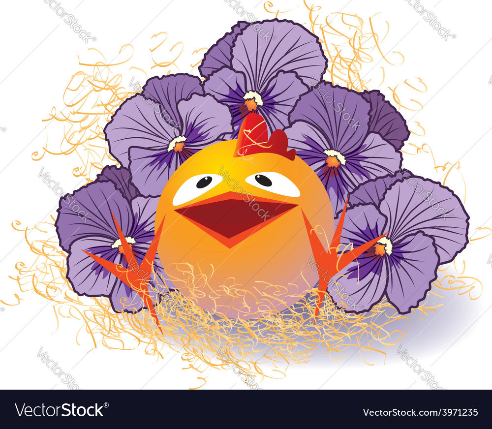 Violet pansies and chicken vector | Price: 1 Credit (USD $1)