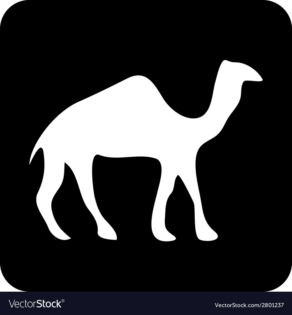 Camel button vector | Price: 1 Credit (USD $1)