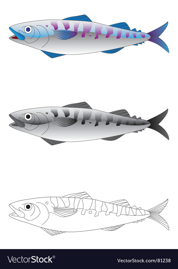 Deep sea fish vector | Price: 1 Credit (USD $1)