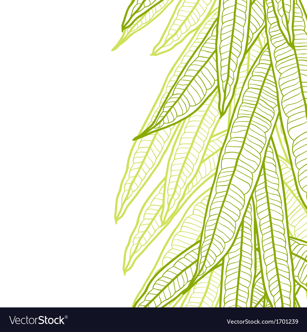Seamless natural pattern with long leaves vector | Price: 1 Credit (USD $1)