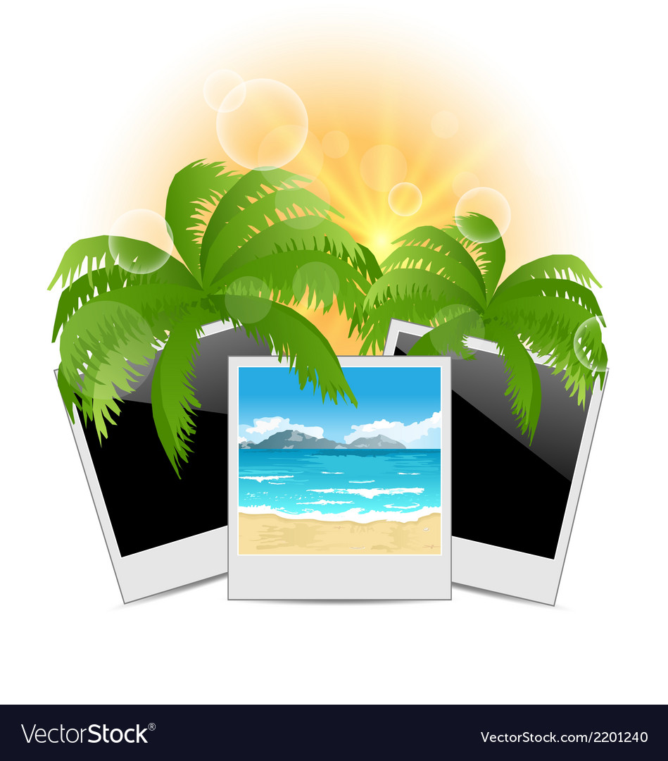 Summertime background with set photo frames vector | Price: 1 Credit (USD $1)