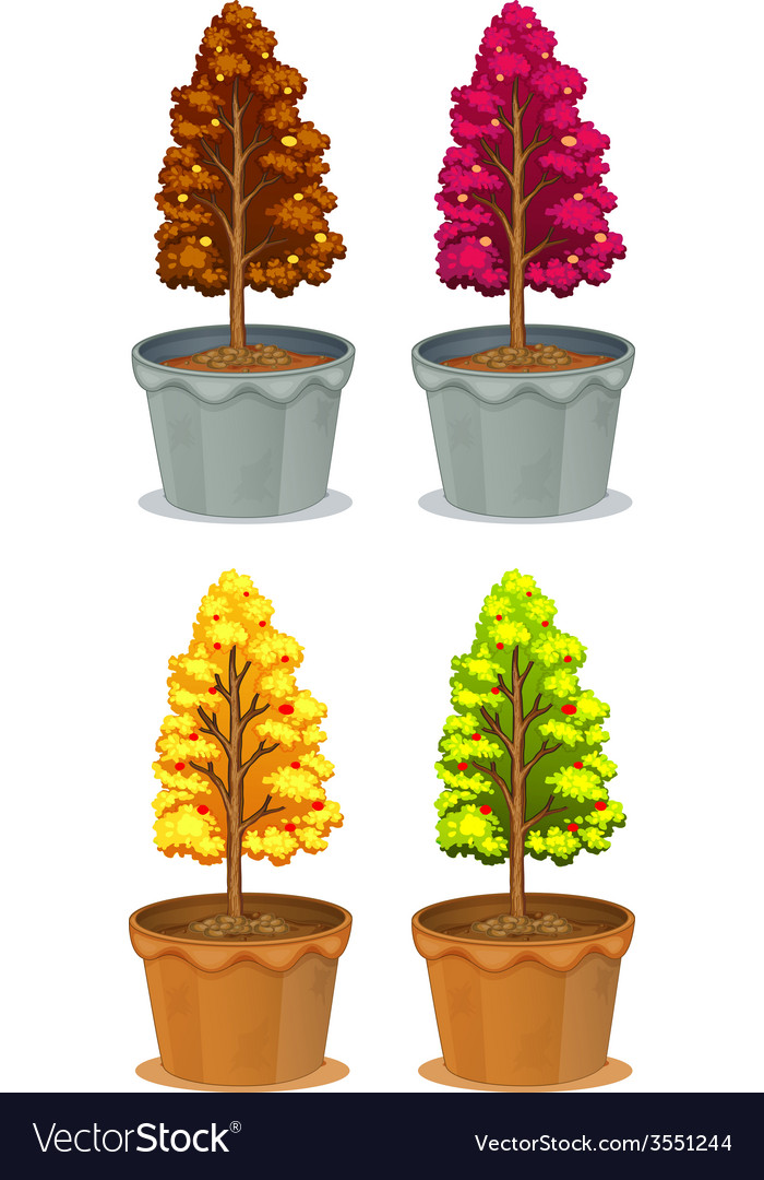 Four pots of plants vector | Price: 1 Credit (USD $1)