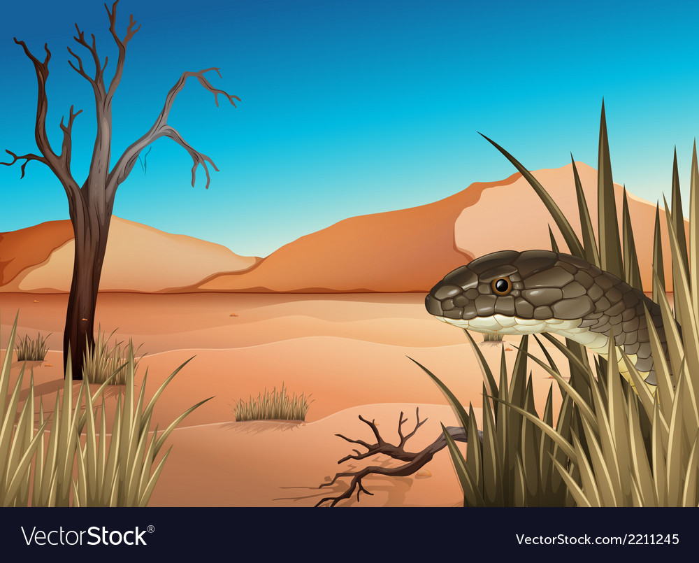 A reptile at the desert vector | Price: 3 Credit (USD $3)