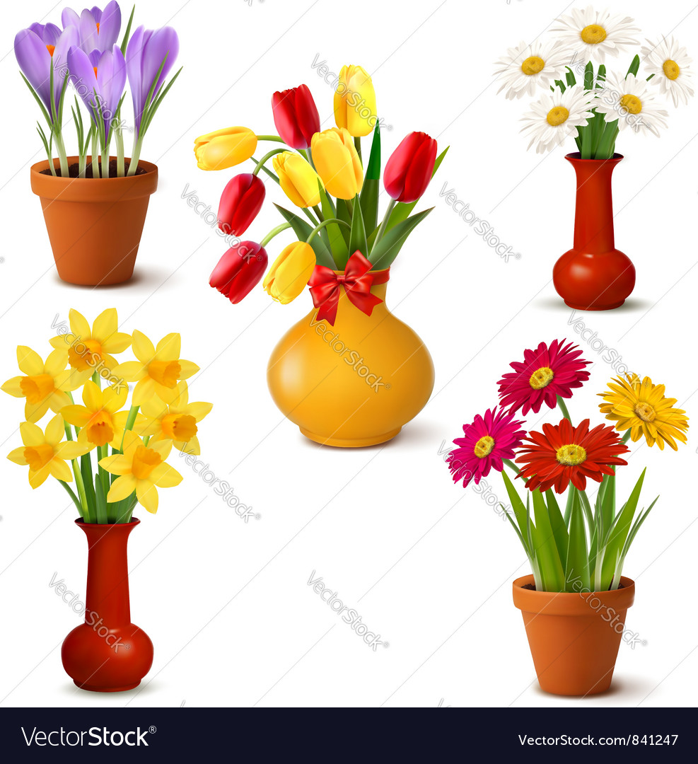 Spring and summer colorful flowers in vases vector | Price: 1 Credit (USD $1)