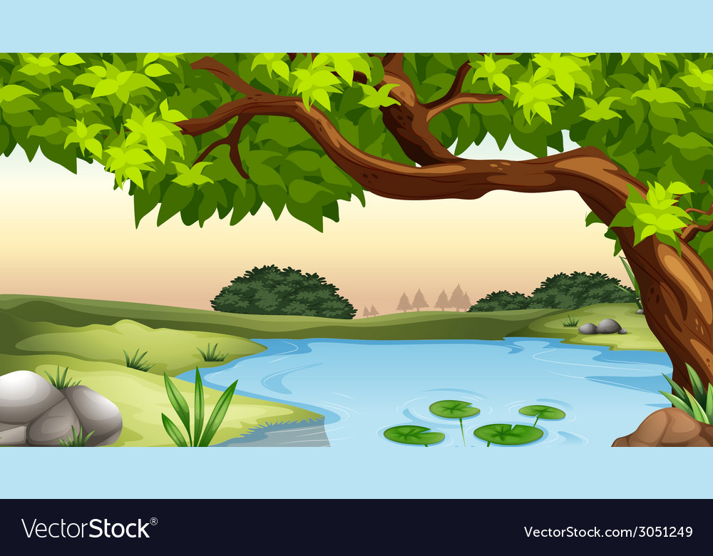 Pond vector | Price: 1 Credit (USD $1)