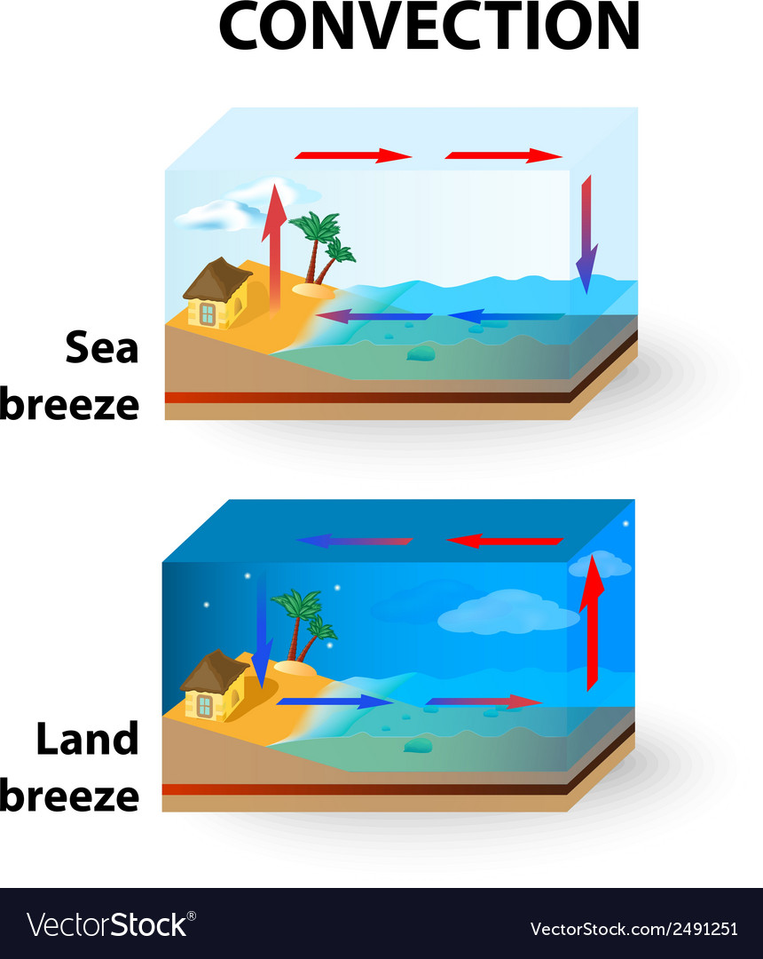 Con land breeze and sea breeze vector | Price: 1 Credit (USD $1)