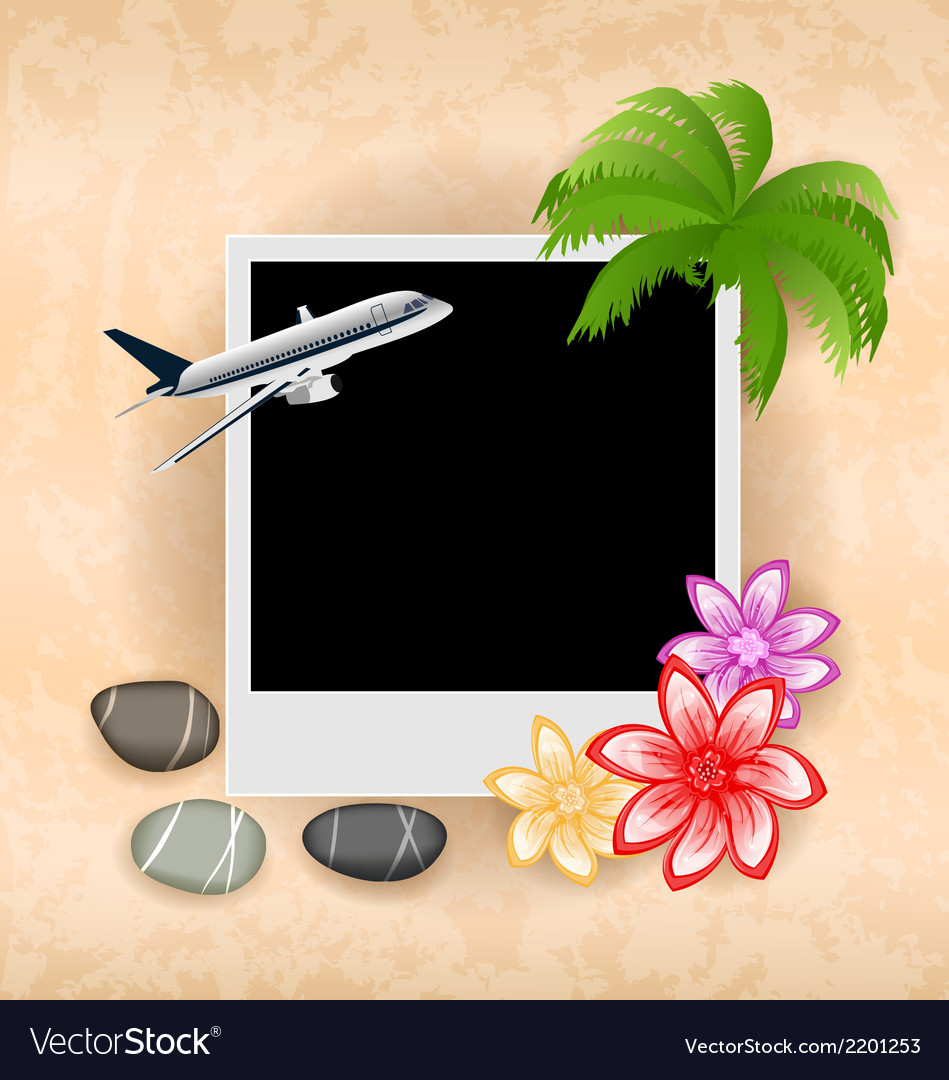 Photo frame with plane palm flowers sea pebbles vector | Price: 1 Credit (USD $1)