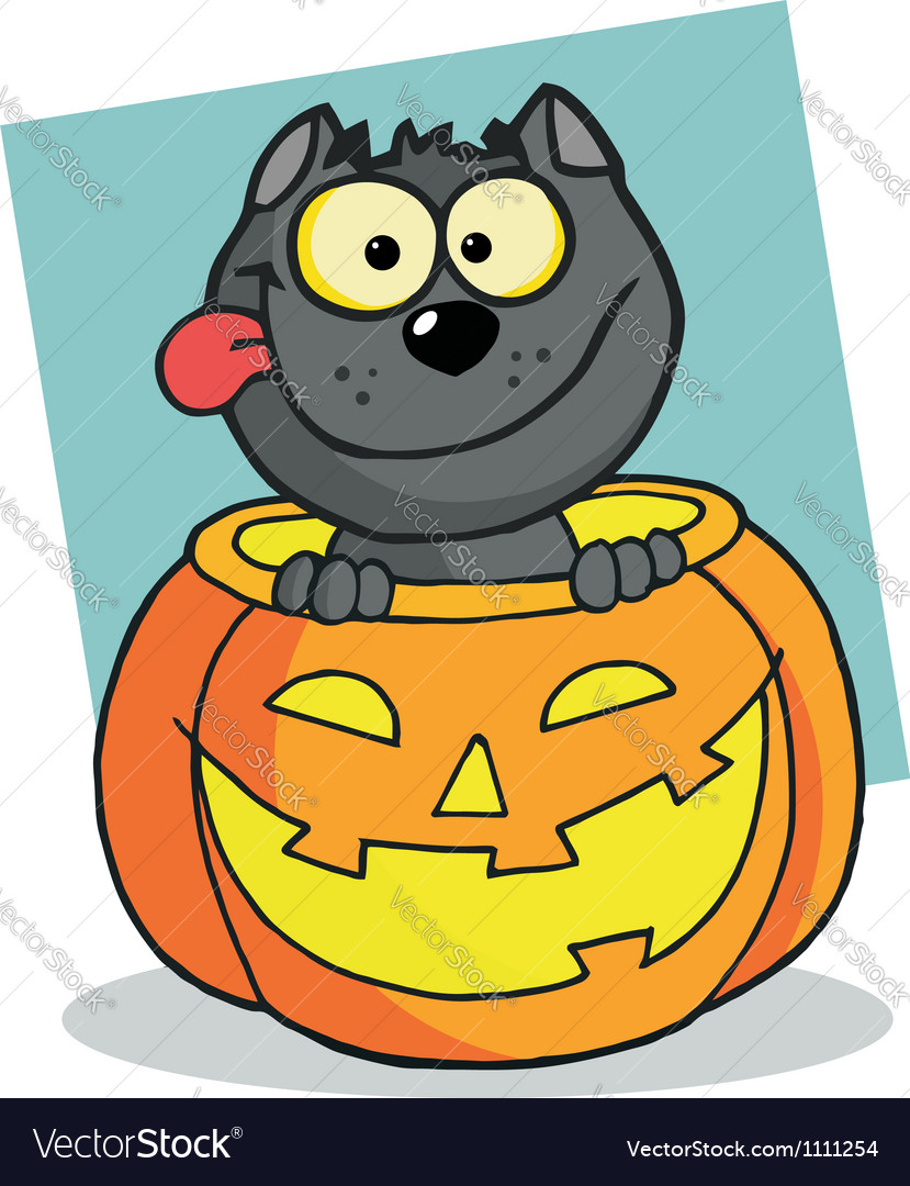 Happy cat in a pumpkin vector | Price: 1 Credit (USD $1)