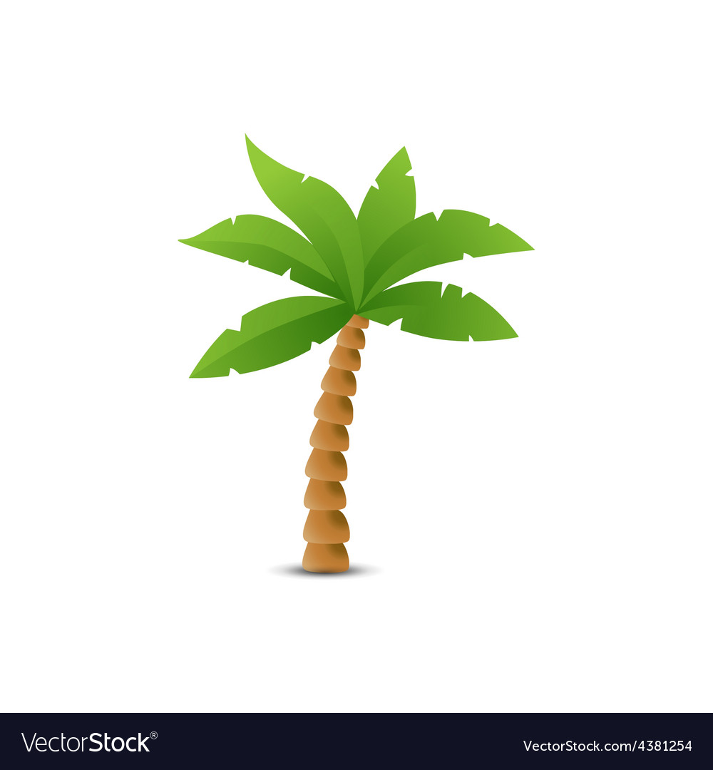 Tropical palm isolated on white vector | Price: 1 Credit (USD $1)
