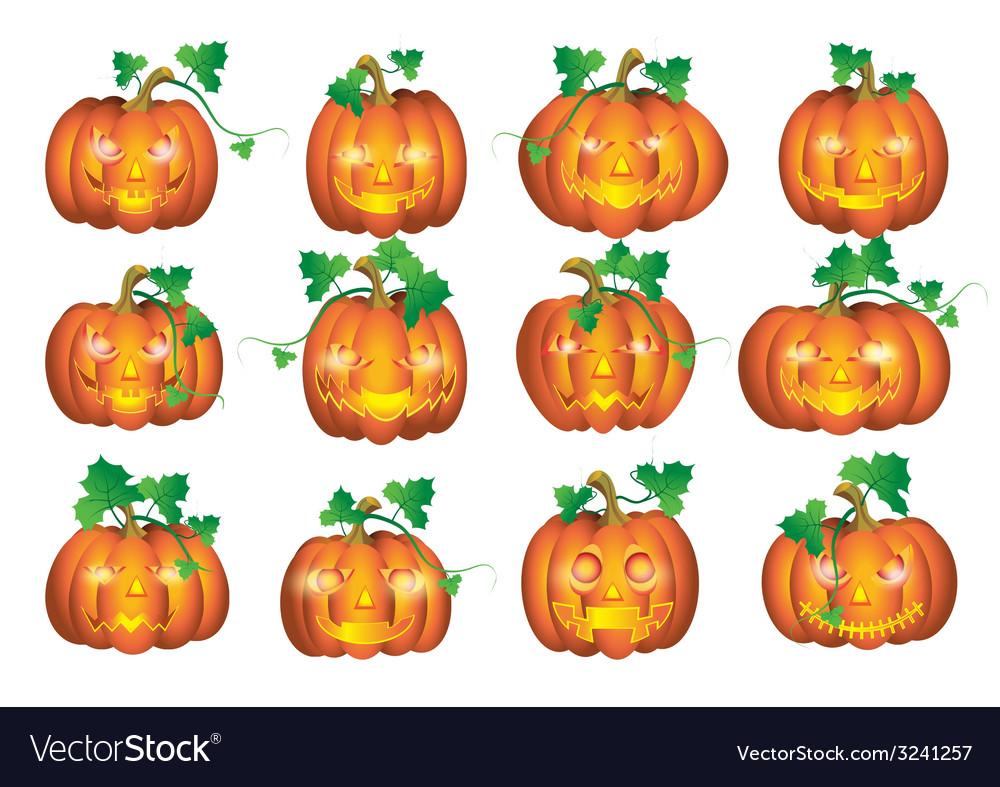 Set pumpkins vector | Price: 1 Credit (USD $1)