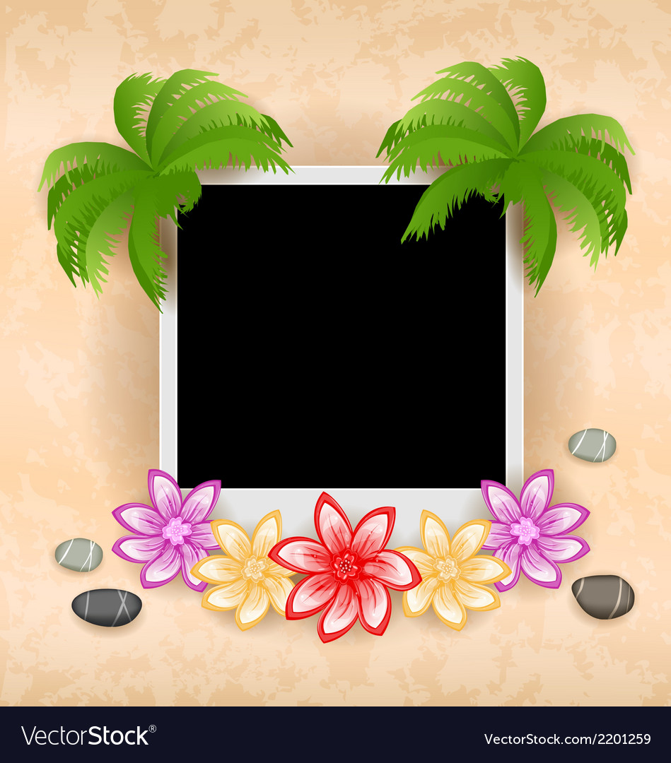 Photo frame with palm flowers sea pebbles vector | Price: 1 Credit (USD $1)
