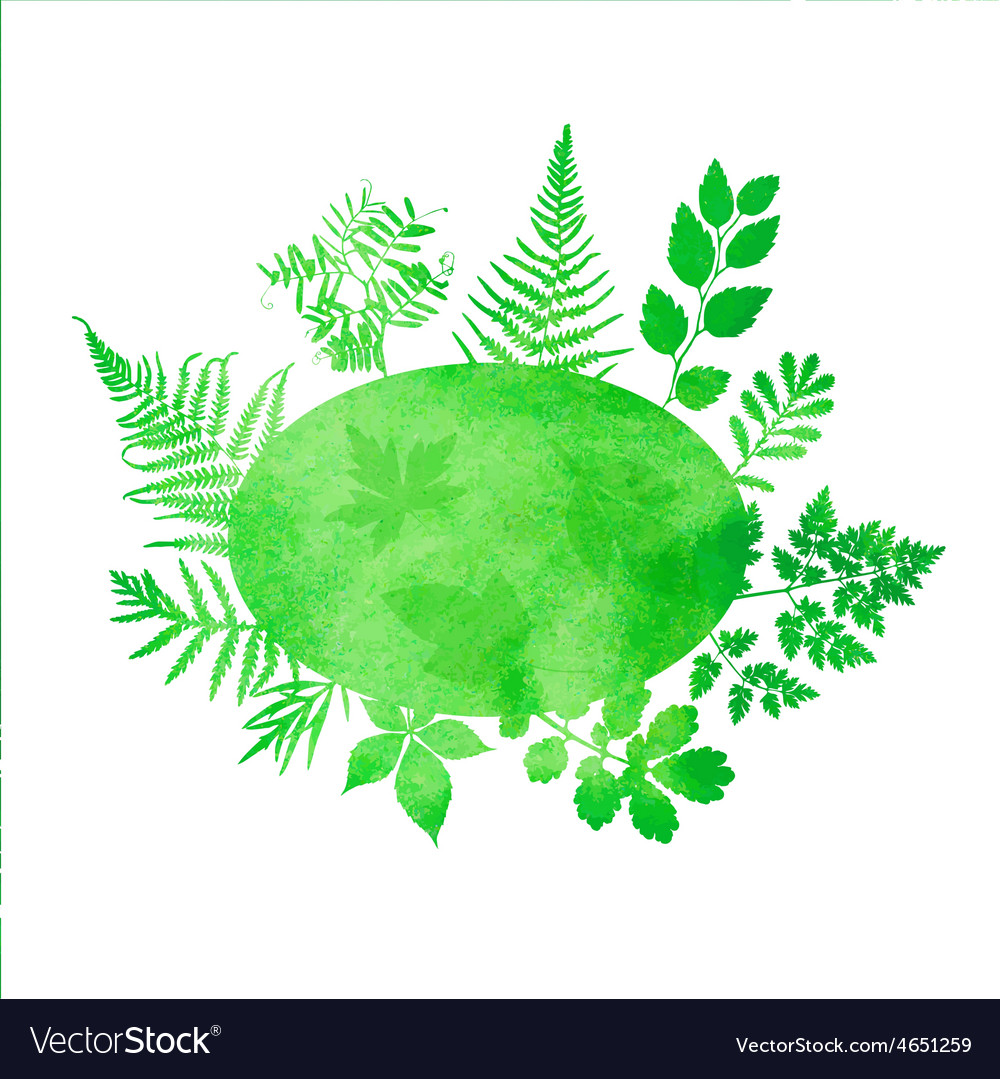 Summer watercolor background with green grass and vector