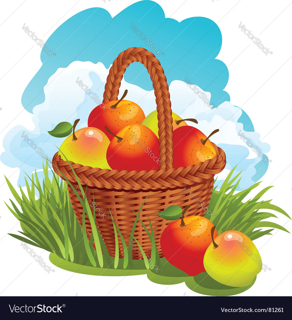 Basket with apples vector | Price: 3 Credit (USD $3)