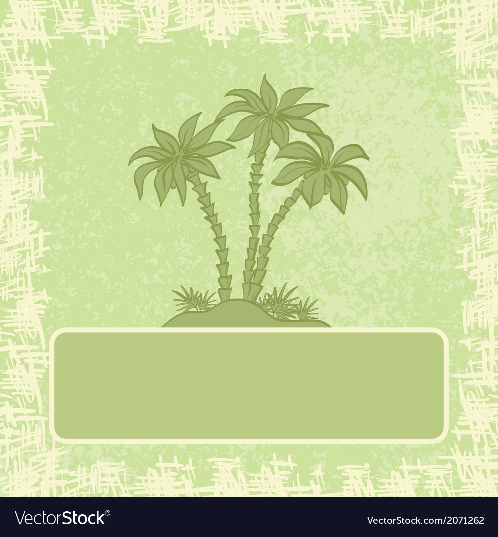 Exotic background palm and frame vector | Price: 1 Credit (USD $1)