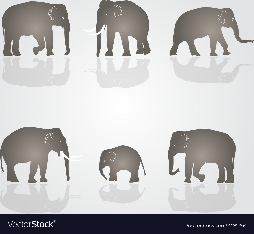 Set of simple elephants eps10 vector | Price: 1 Credit (USD $1)