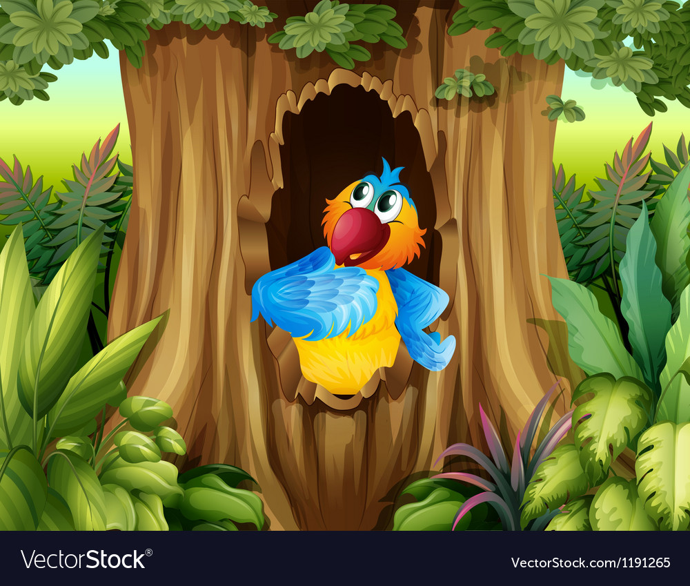 A parrot inside a tree hollow vector | Price: 1 Credit (USD $1)