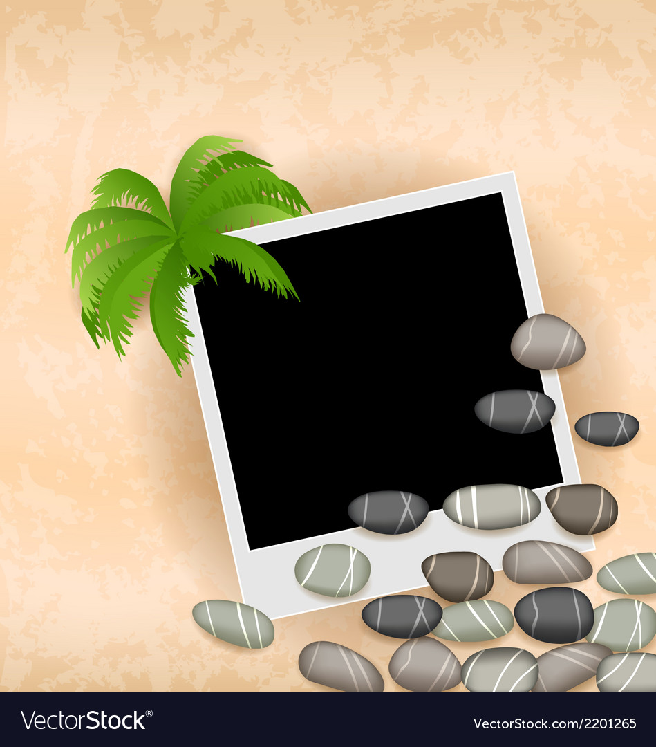 Photo frame background with stones and palm vector   Price: 1 Credit (USD $1)