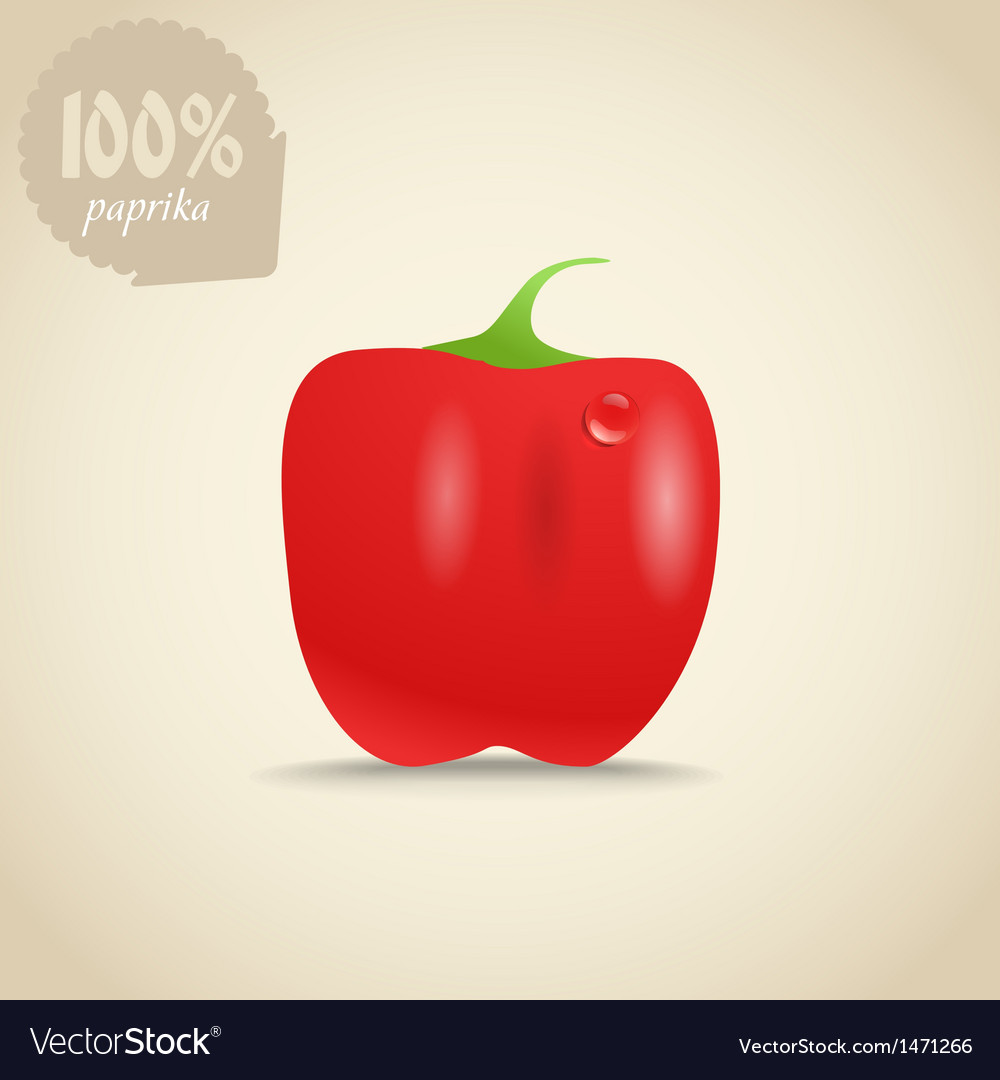 Cute fresh red paprica vector | Price: 1 Credit (USD $1)