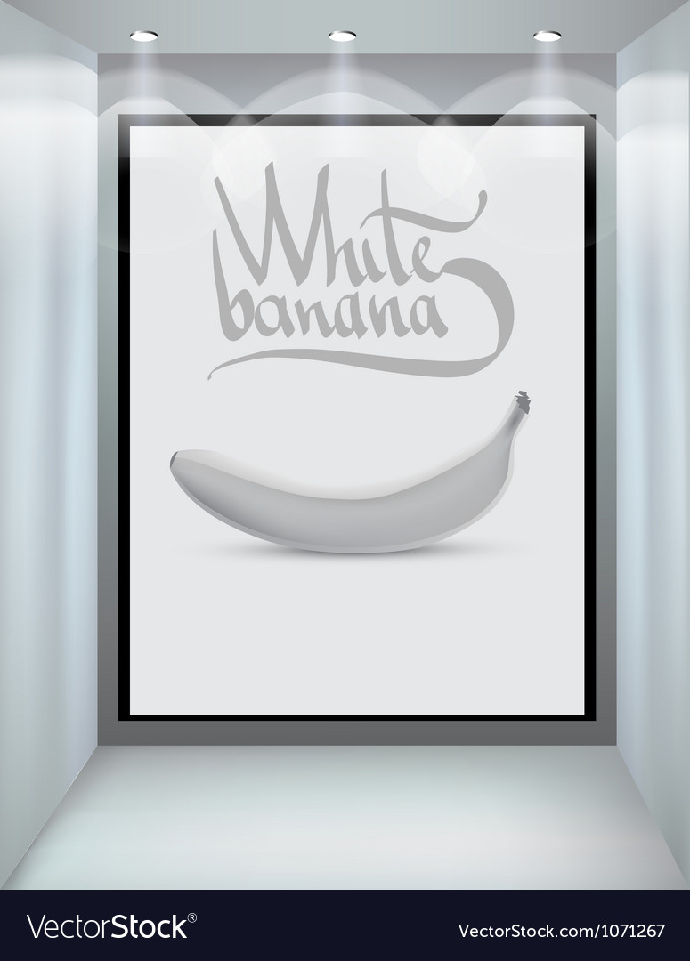 White banana vector | Price: 1 Credit (USD $1)
