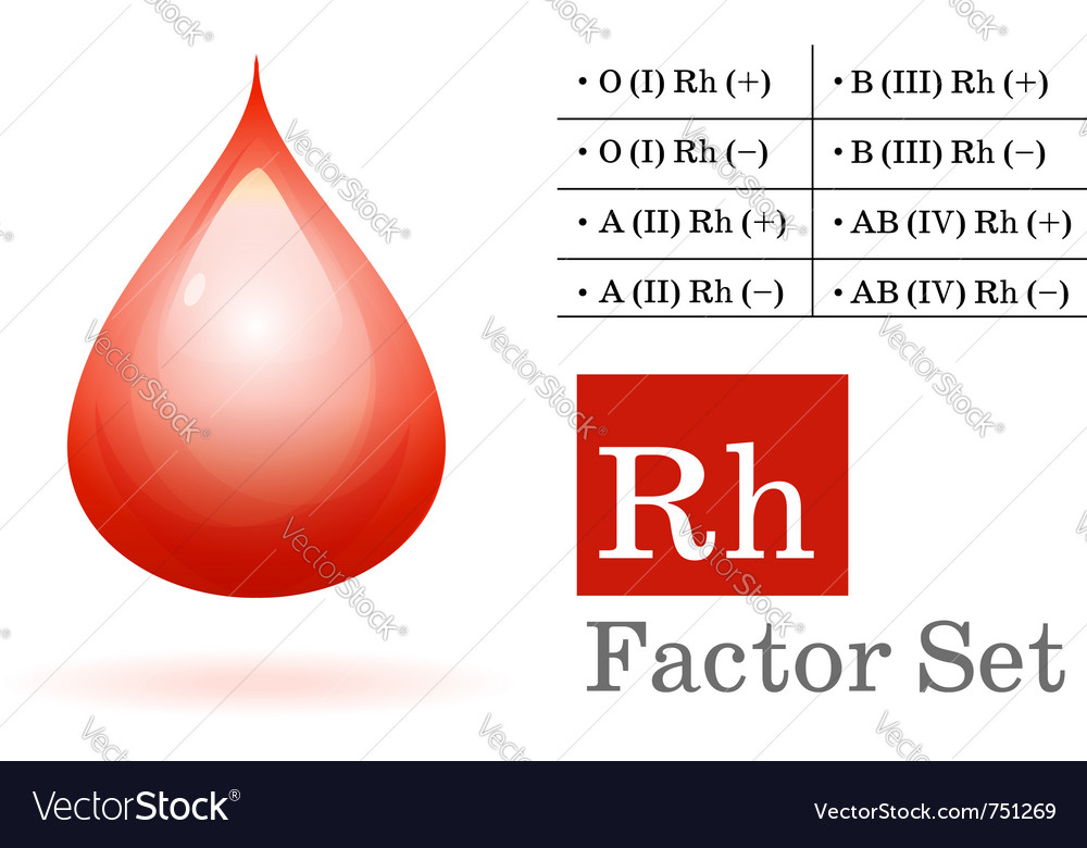 Rh factor and blood drop vector | Price: 1 Credit (USD $1)
