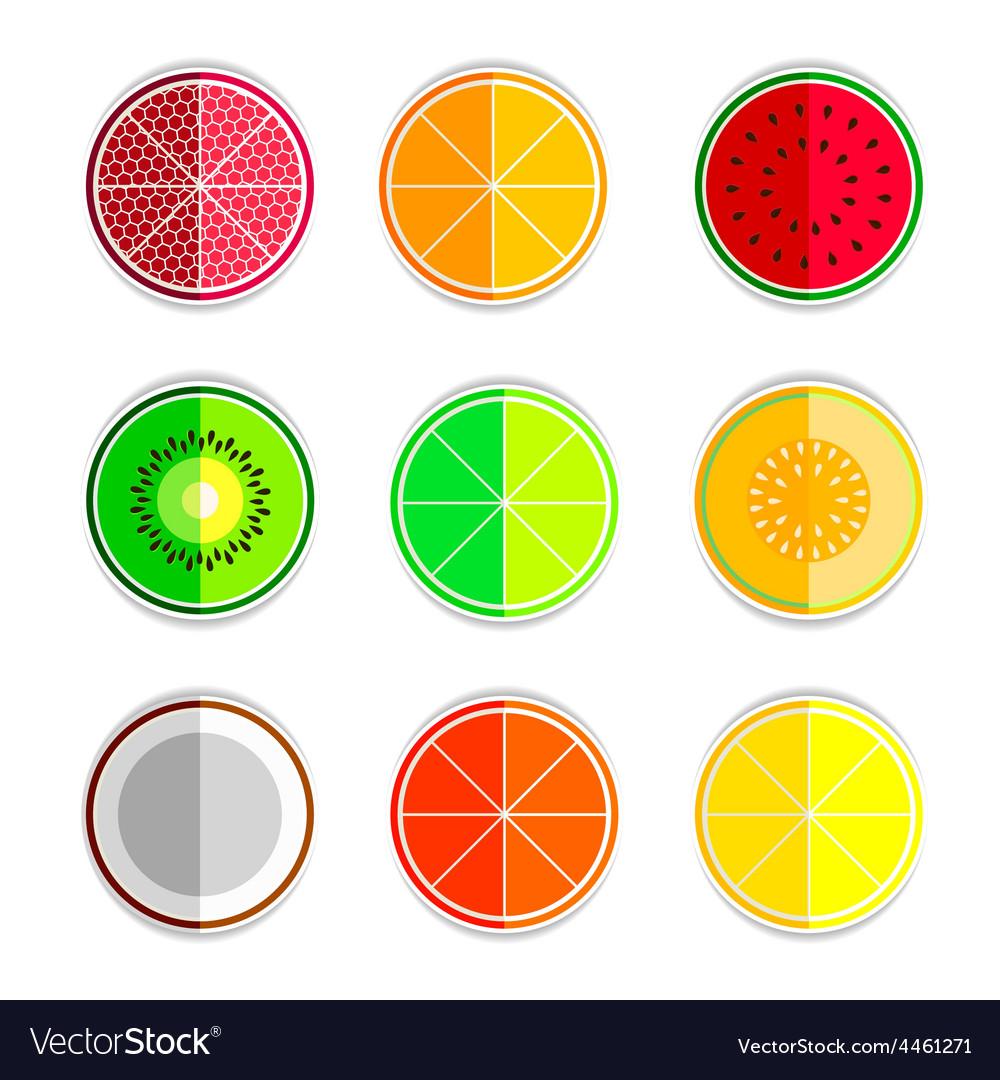 Orange mandarin lemon watermelon cantaloupe kiwi vector | Price: 1 Credit (USD $1)