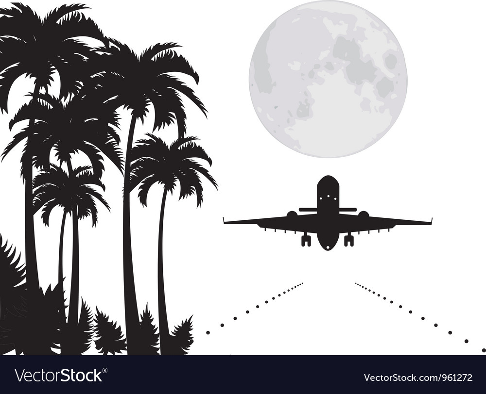 Palms moon and plane over runway vector | Price: 1 Credit (USD $1)