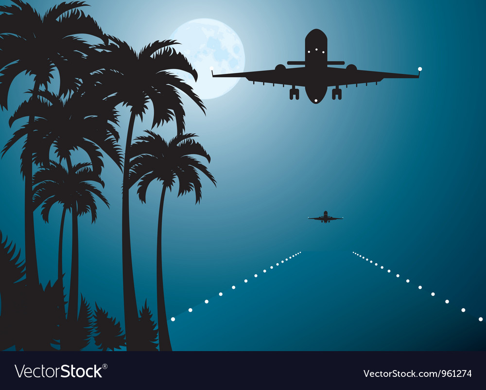 Palms moon and plane vector | Price: 1 Credit (USD $1)