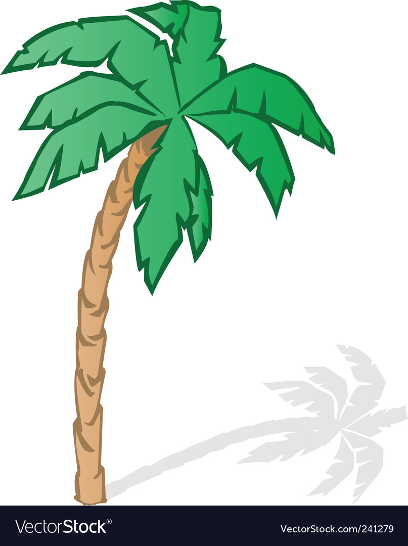 Tropical palm tree vector   Price: 1 Credit (USD $1)