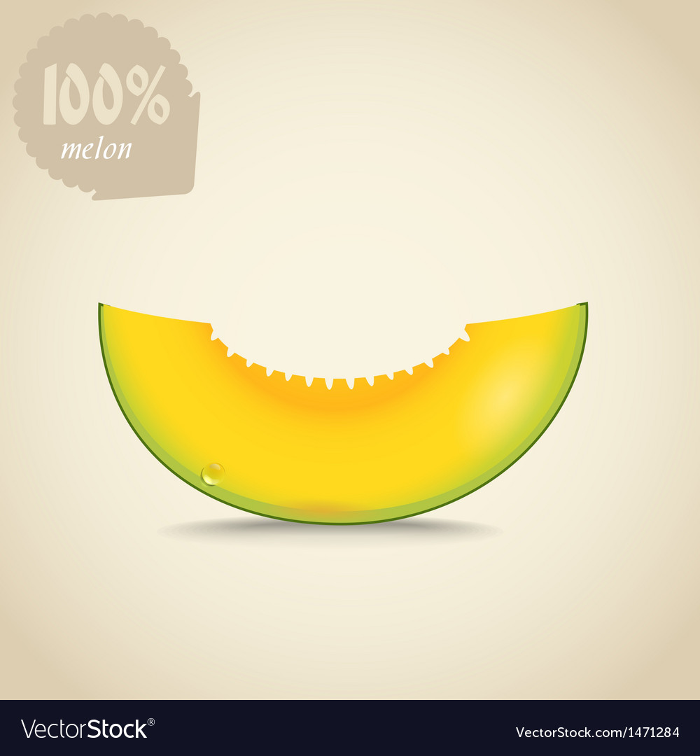 Cute fresh yellow melon vector | Price: 1 Credit (USD $1)