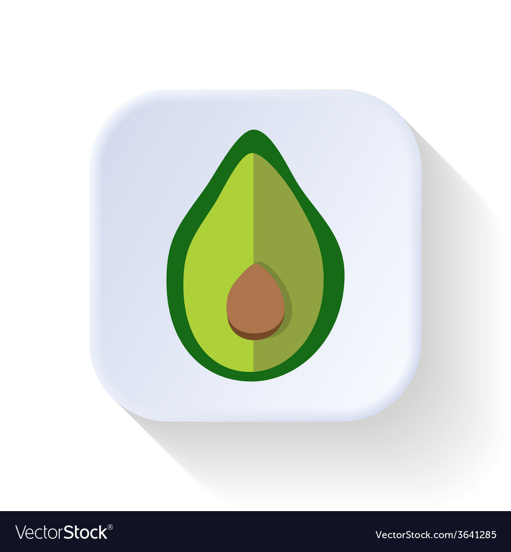 Avocado fruit vector | Price: 1 Credit (USD $1)