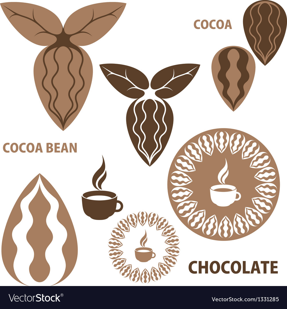 Cocoa chocolate cocoa bean vector | Price: 1 Credit (USD $1)