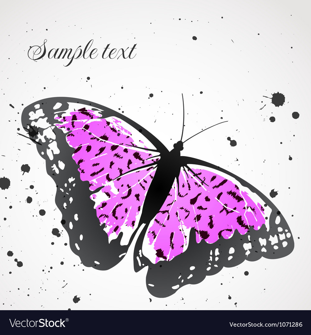 Background with leopard butterfly vector | Price: 1 Credit (USD $1)