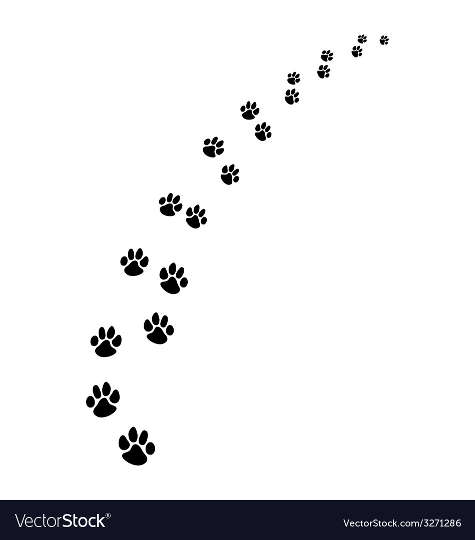 Footprints of dogs 2 vector | Price: 1 Credit (USD $1)