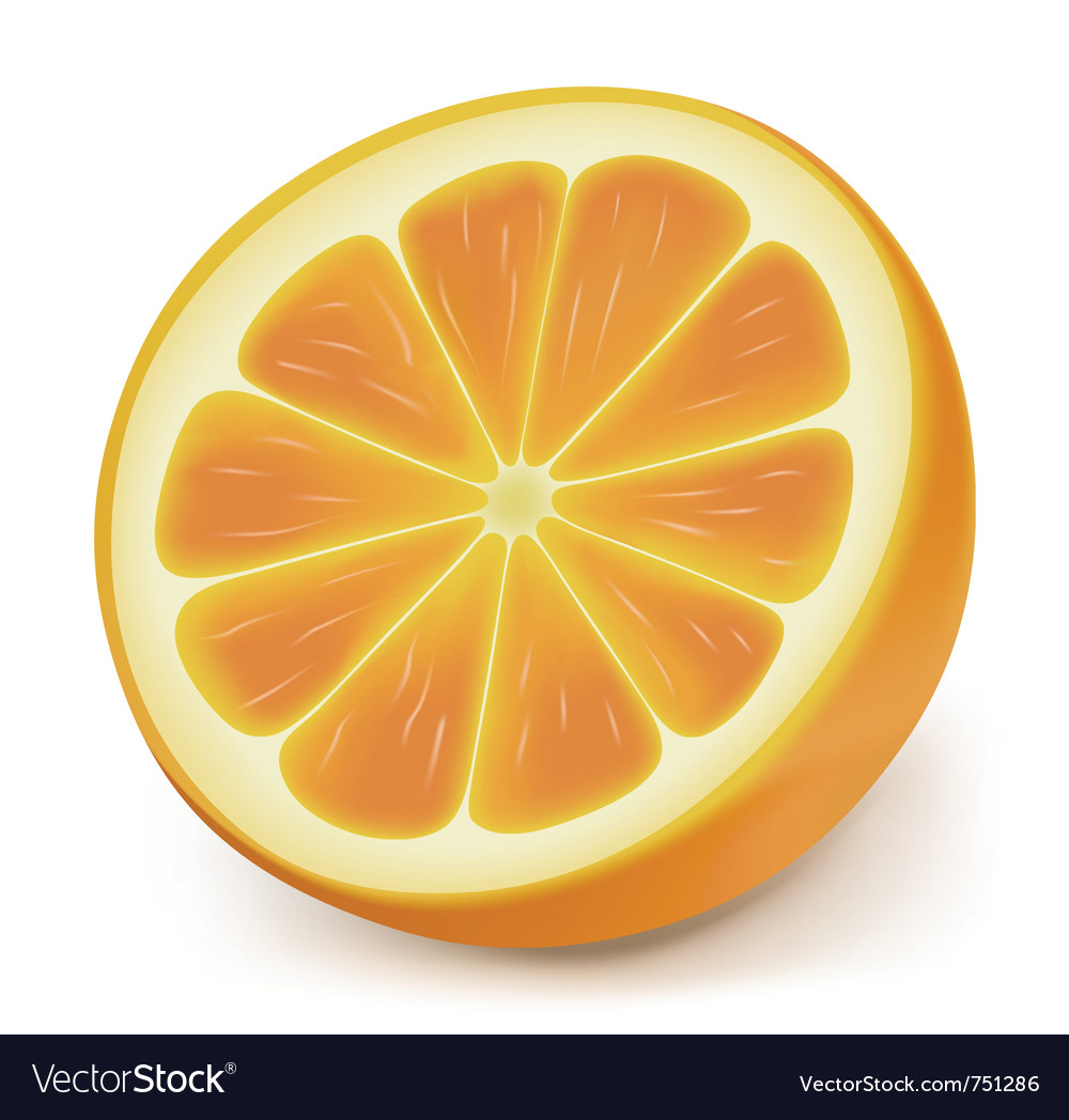 Photorealistic orange slice vector | Price: 1 Credit (USD $1)