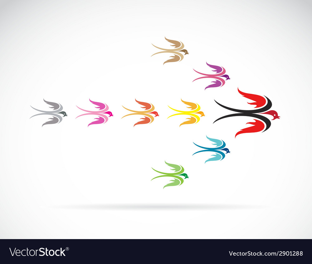 Group of colorful swallow birds vector | Price: 1 Credit (USD $1)