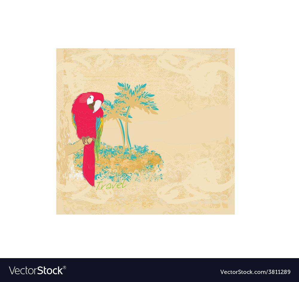 Colourful parrot bird sitting on the perch vector | Price: 1 Credit (USD $1)