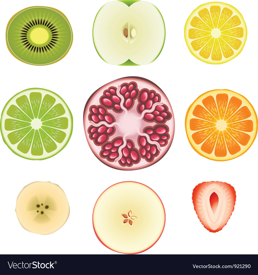 Fruit slice set vector