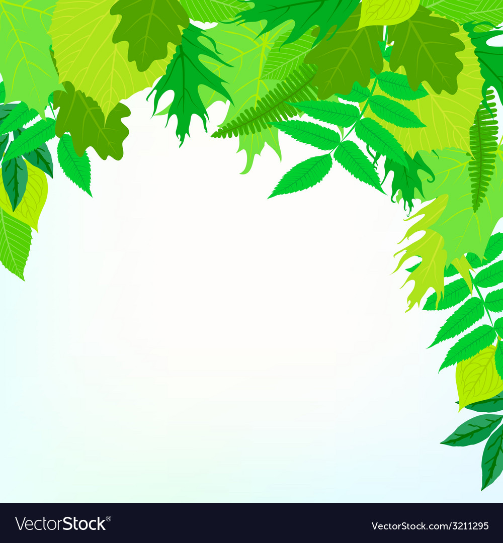 Spring card background with green leaves vector | Price: 1 Credit (USD $1)