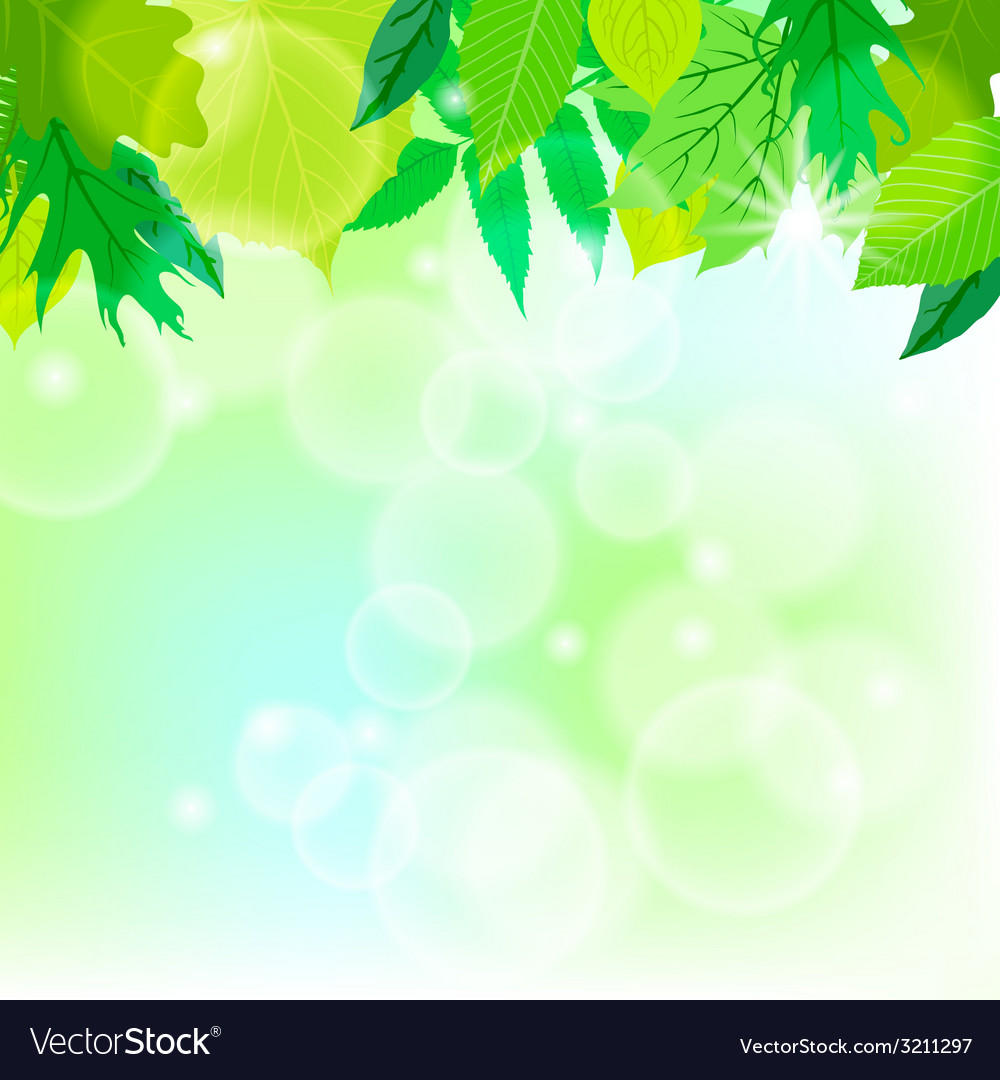 Spring card background with sun and leaves vector | Price: 1 Credit (USD $1)