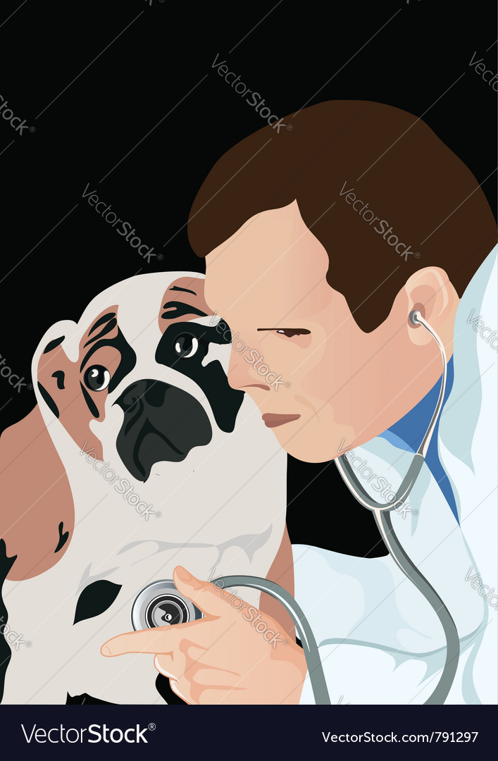 Veterinarian vector | Price: 1 Credit (USD $1)