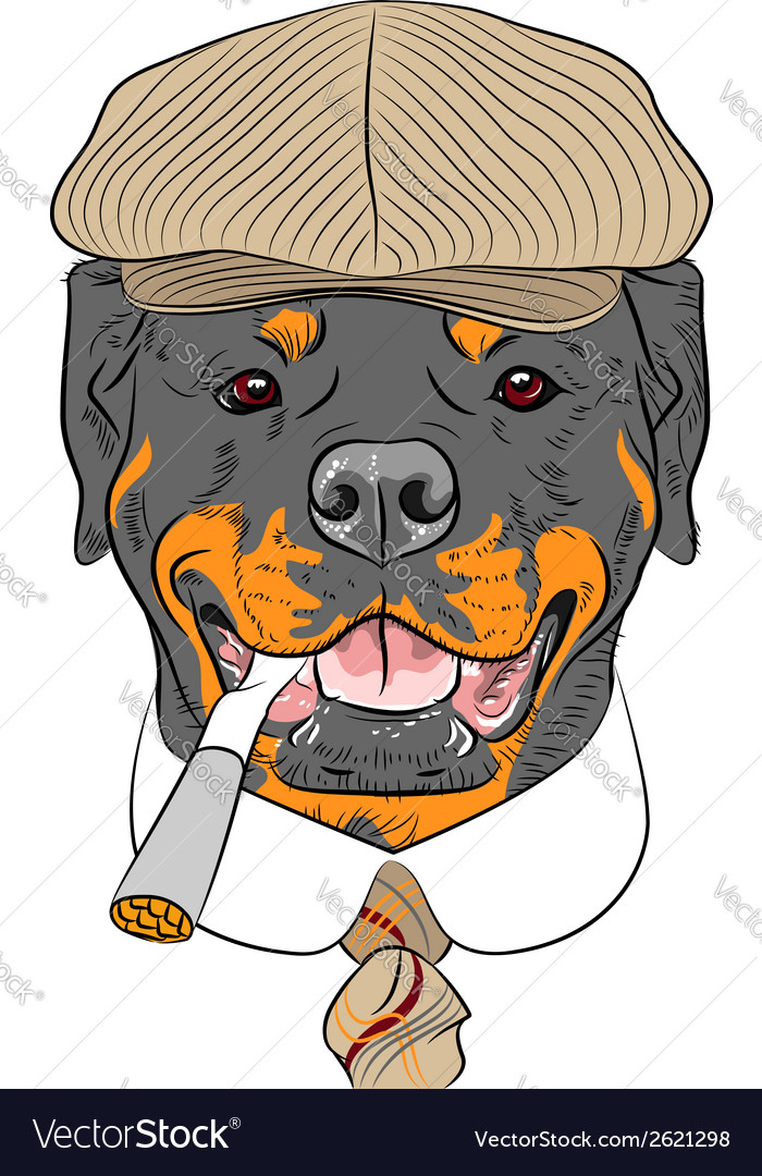 Hipster dog rottweiler breed vector | Price: 1 Credit (USD $1)